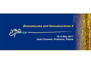 Biomolecules and Nanostructures 6